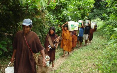 Climate change and indigenous peoples in Peru: environmental policies or development policies?